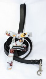 LEATHER LEASH WITH GUITARS